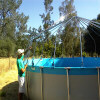 Dome framework being attached to the above ground bladder pool